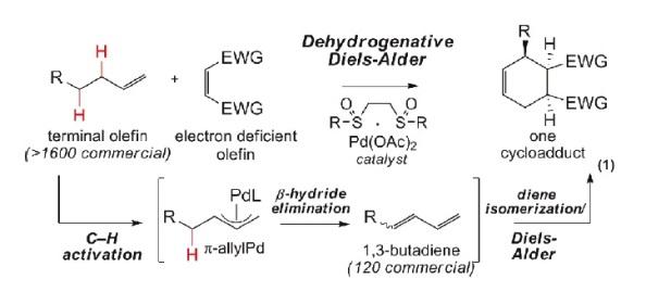 Figura 1. Esquema amb les reaccions tradicionals (ruta de baix) i la nova reacció (ruta de dalt)