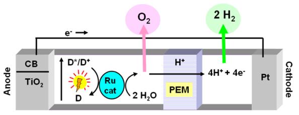 Figura 2. Esquema de la cèl·lula solar Grätzel.