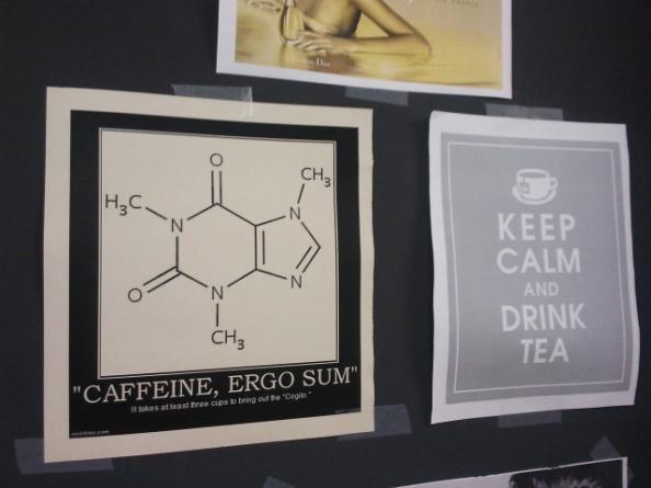 La fórmula química de la cafeïna en una de les parets dels laboratoris de l'Institut de Química Computacional i Catàlisi situat al Parc Científic i Tecnològic de la Universitat de Girona.